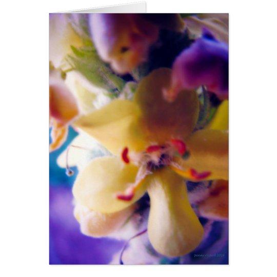 Bright Spring Flower Card