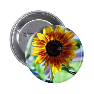 Bright Sunflower - Floral Photography 6 Cm Round Badge