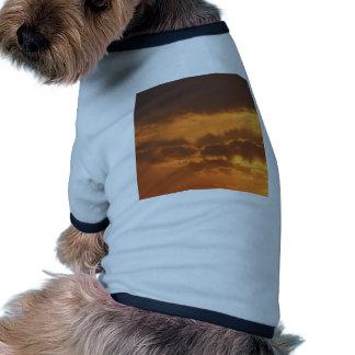 Bright Sunrise Pet Tshirt