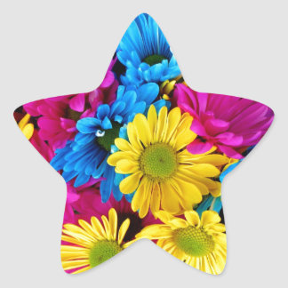 Bright Teal Hot Pink Yellow Daisies Flowers Gifts Star Stickers