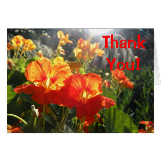 Bright Thank You Card