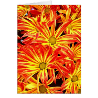 Bright Vibrant Beautiful Orange and Yellow Flowers Greeting Card