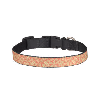 Bright warm background in vintage style. pet collar