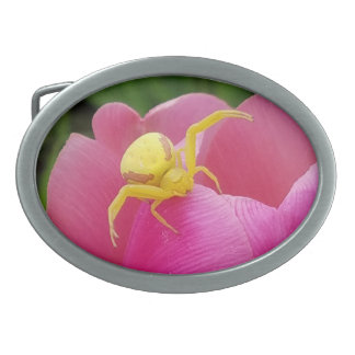 Bright Yellow Crab Spider on Tulip Oval Belt Buckle