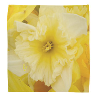 Bright Yellow Daffodils Bandana