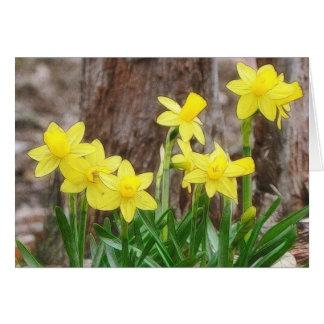 Bright Yellow Daffodils Greeting Card