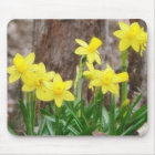 Bright Yellow Daffodils Mouse Mat