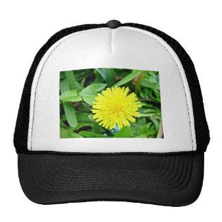 Bright Yellow Dandelion flower Mesh Hats