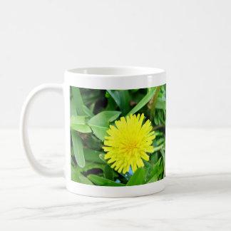 Bright Yellow Dandelion flower Mugs
