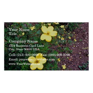Bright yellow flowers business card templates