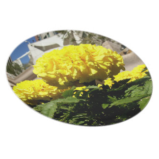 Bright Yellow Flowers Party Plates