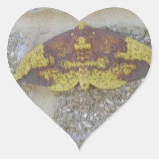 Bright Yellow Green & Brown Moth on Grey Brick Sticker
