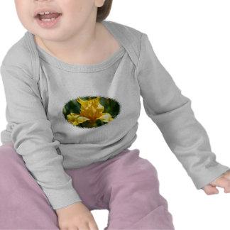 Bright Yellow Iris Shirts