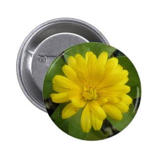 Bright Yellow Marigold Button