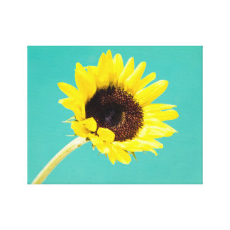 Bright Yellow Sunflower Floral Canvas Print