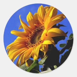 Bright Yellow Sunflower Round Sticker