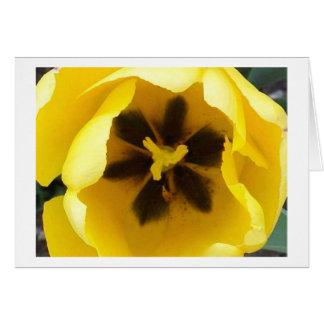 Bright Yellow Tulip Blank Greeting Card