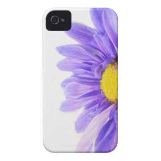 Brightly Alive II iPhone 4 Covers
