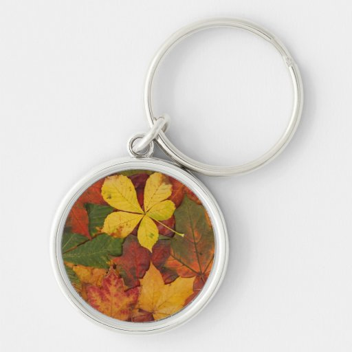 Brightly Colored Fall Leaves Key Chain