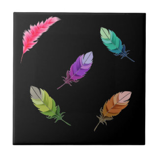 Brightly Colored Feathers On Black Tile
