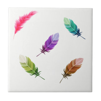 Brightly Colored Feathers On White Tile