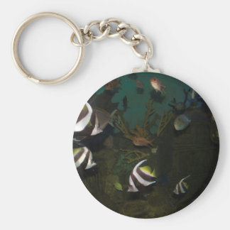 Brightly colored fish inside the tank keychain