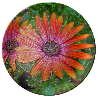 Brightly coloured flowers vivid plate