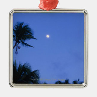 Brightly lit moon, silhouette of coconut trees Silver-Colored square decoration