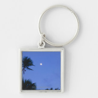 Brightly lit moon, silhouette of coconut trees Silver-Colored square key ring