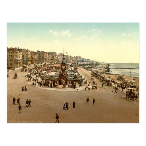 Brighton - Aquarium, England Post Cards