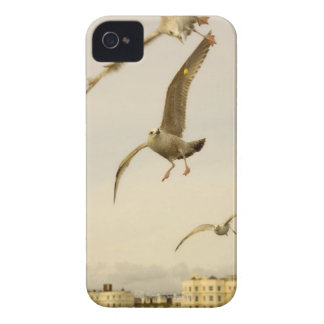 Brighton, England 2 Case-Mate iPhone 4 Case