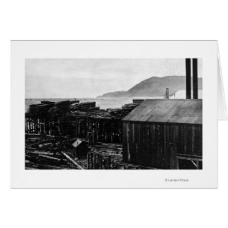 Brighton, Oregon Lumber Mills on Coast Photograp Card