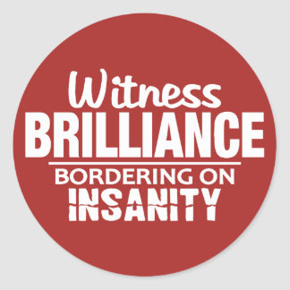 BRILLIANCE VS INSANITY custom stickers