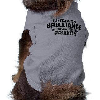 BRILLIANCE VS INSANITY pet clothing