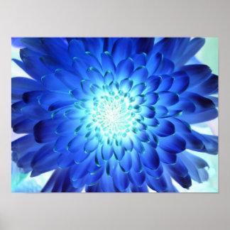 Brilliant blue flower macro. Negative of yellow Poster