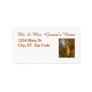 Brilliant Gold Peacock Medium Address Labels