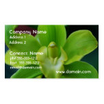 Brilliant Green Orchid Double-Sided Standard Business Cards (Pack Of 100)
