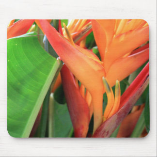 Brilliant Heliconia Tropical Flowers Mouse Mat