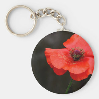 Brilliant Red Poppy Key Ring