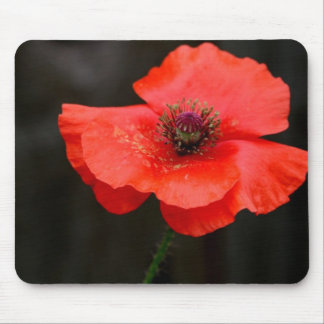Brilliant Red Poppy Mouse Mat