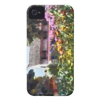 Brilliant Summer Garden Blackberry Bold Cases