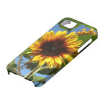 Brilliant Sunflower iPhone Case Case For The iPhone 5