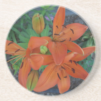 Brilliant Tiger Lily Beverage Coasters