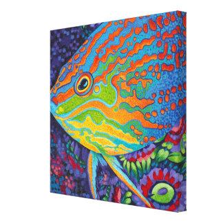 Brilliant Tropical Fish I Canvas Print