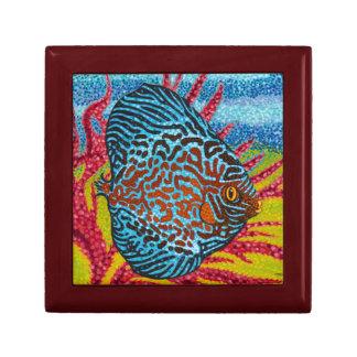 Brilliant Tropical Fish II Gift Box