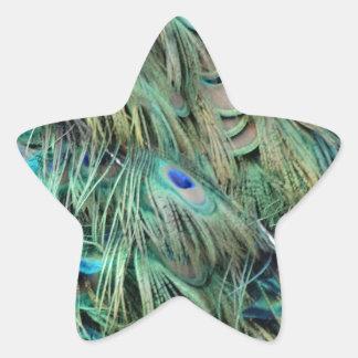 Brilliantly Peafowl Feathers Cool Eye Spots Star Sticker