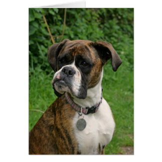 Brindle and White Boxer Dog Greeting Card