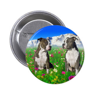 Brindle & Blue Staffordshire & Pit Bull Dogs 6 Cm Round Badge