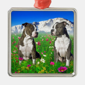 Brindle & Blue Staffordshire & Pit Bull Dogs Silver-Colored Square Decoration