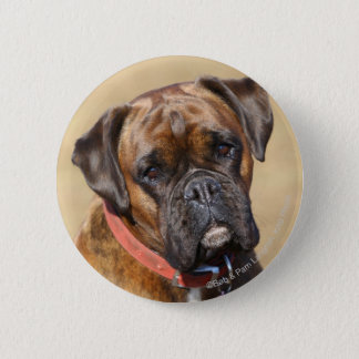 Brindle Boxer Dog 6 Cm Round Badge